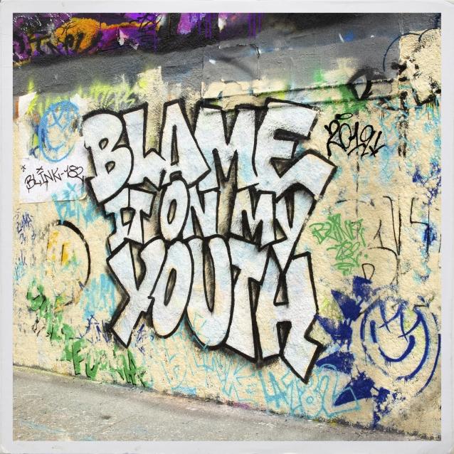 blink182-blameitonyouth
